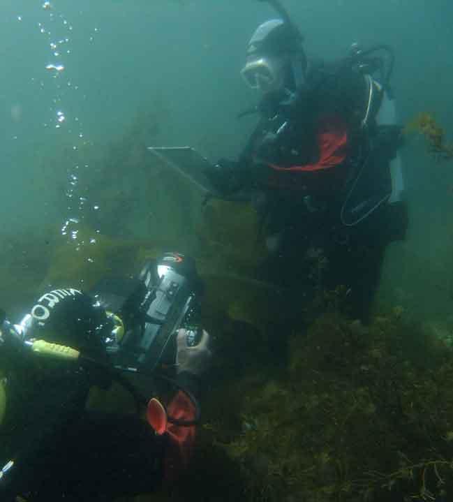 Underwater-filming